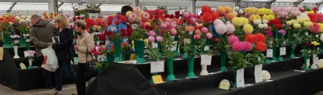 Crowds enjoying the Floral Pavilion