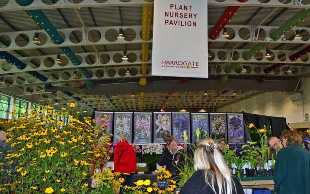 Entering the Plant Nursery Pavilion