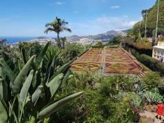 Botanical Gardens, above Funchal, Madeira