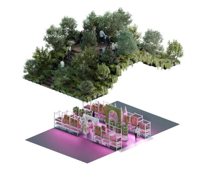 Ikea Gardening Will Save The World Garden. Picture; Tom Dixon