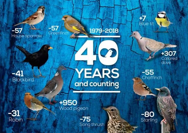 RSPB Big Garden Birdwatch 2019