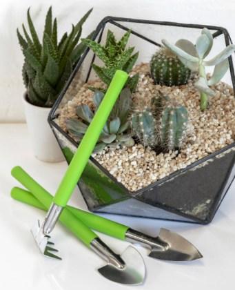 Houseplant Care - Terrarium Tools. Picture; Burgon & Ball