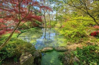 Exbury Gardens, New Forest, Hampshire. Picture; Exbury Gardens