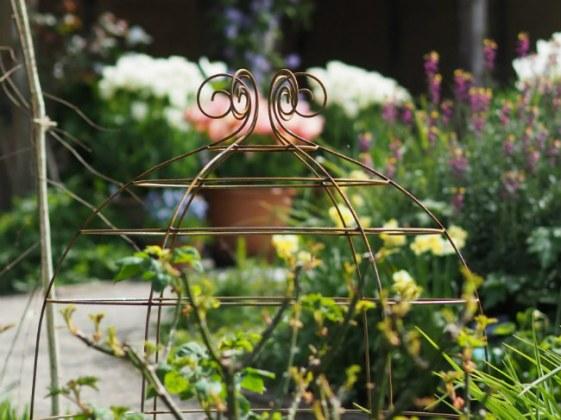 Grande George Bell. Picture; Plant Belles