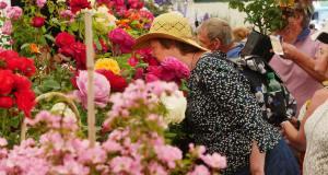 Blenheim Palace Flower Show. Picture; Blenheim Palace