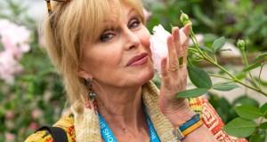 Keen gardener and RHS Chelsea veteran Joanna Lumley. Picture; David Austin Roses