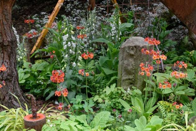 Walker's Forgotten Quarry Garden by Graham Bodle. Picture; RHS/Tim Sandall