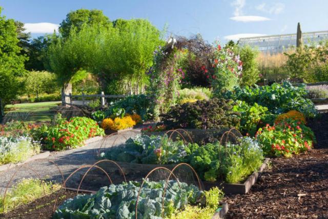 RHS Harlow Carr's kitchen garden. Picture; RHS/Lee Beel