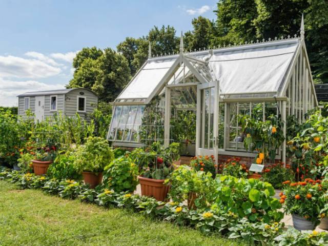 Edible Eden by Chris Smith. Picture; RHS/Joanna Kossak