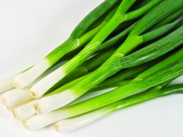 Spring onion Totem. Picture; Thompson & Morgan