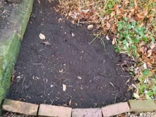 Clear soil minus a tree, Campanula, Lysimachia and daylilies