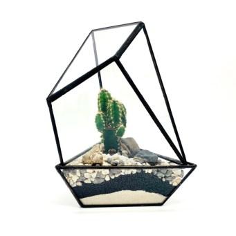 DIY Cactus House Terrarium. Picture; The Urban Botanist