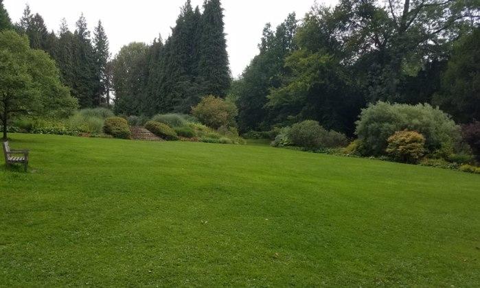 Lawn by the waterside