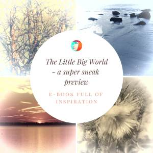The Little Big World promophoto