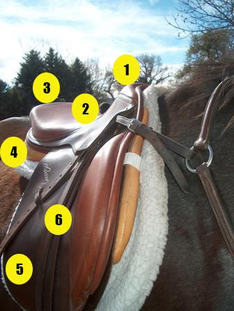 Parts of the saddle quiz - English saddle with numbers - Mane-U