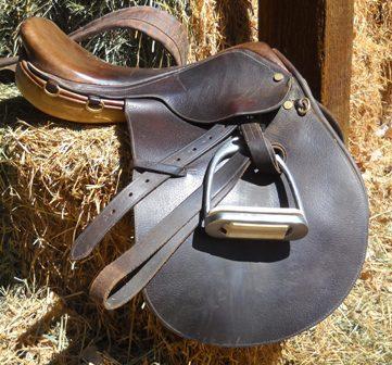 Parts of the saddle quiz - English saddle - ManeU