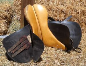 Parts of the saddle quiz - underside - English saddle - ManeU