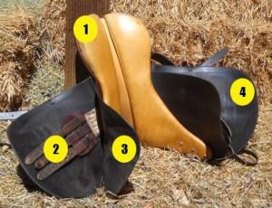 Parts of saddle quiz - English saddle underside - Mane-U