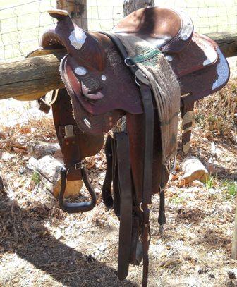 Parts of the saddle quiz - western saddle - ManeU