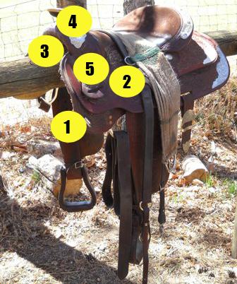 Parts of saddle quiz - Western saddle near side - Mane-U