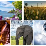 <a class=&quot;amazingslider-posttitle-link&quot; href=&quot;https://www.manekitravel.com/5-conseils-pour-reussir-vos-photos-de-voyage/&quot; target=&quot;_self&quot;>5 conseils pour réussir vos photos de voyage</a>