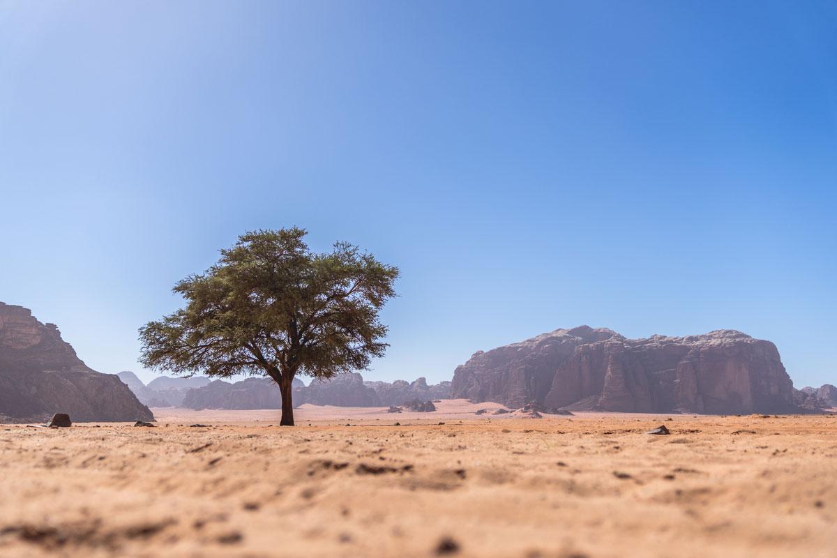 3 jours inoubliables dans le désert du Wadi Rum