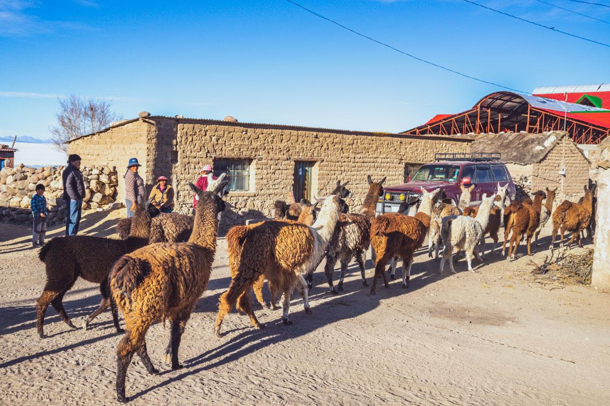 salar d'Uyuni - Bolivie
