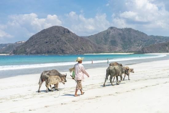 itinéraire 2 mois en Indonésie