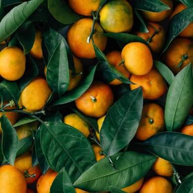Frutas y Verduras orgánicas a domicilio en Santiago - alimentación consciente - Manelun