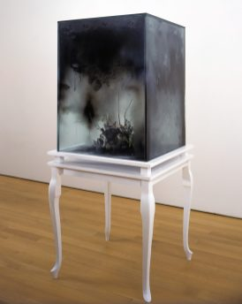Untitled, 2007, wood, glass, graphite, spray foam, silk foliage, silk birds, bird nest, cm 73.5x73.5x166.5