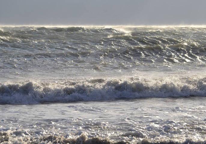 04-Marea in miezul iernii-Rux Georgescu