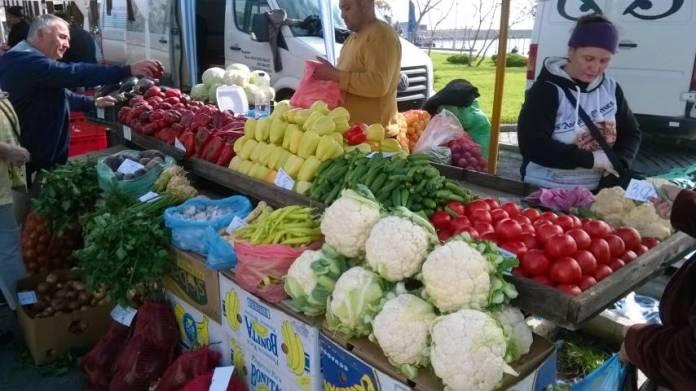 14-zilele-recoltei-mangalia-2014