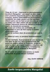 Program electoral Zanfir Iorgus-2