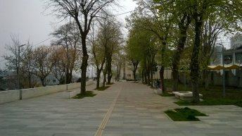 Aleea teilor-2