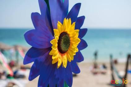 Flower Power Fest Vama Veche-04