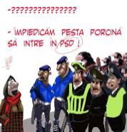 pesta-porcina-marian-avramescu