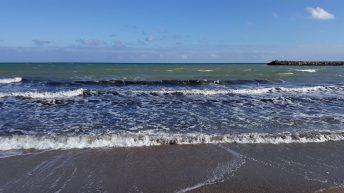 marea-la-mangalia-nov2018 (13)