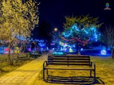 Primăria-Consiliul-Local-Limanu-Sarbatori (15)