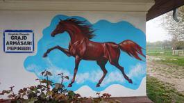 Gabriel-Tora-pictura-murala-Herghelia-Mangalia3