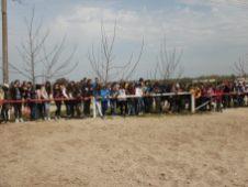 copii-din-județul-Constanța-au-vizitat-Herghelia-Mangalia-19