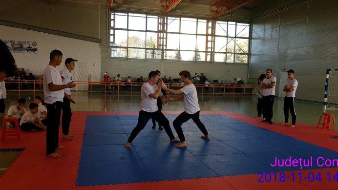 kung-fu-florin-iordanoaia3