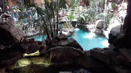 Dallas_World_Aquarium_MN (73)