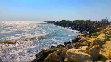 Marea la Mangalia - Marcel Almajanu6