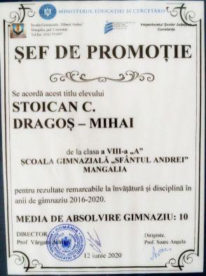 Dragos Mihai Stoican - Sef de Promotie 2016-2020