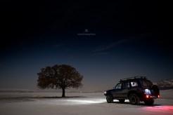 Copacul lui Mircea Bezergheanu - iarna