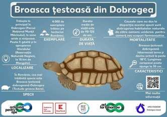 STOP deșeurilor din ape - ABADL-06