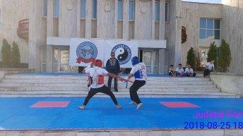ziua-mondiala-kung-fu-mangalia3