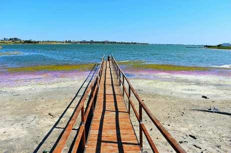 Lacul Techirghiol în pericol1