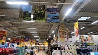 Ruxandra Georgescu- Expo-Auchan-Cosntanta-Sud-03