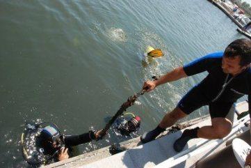 Campanie-de-ecologizare-în-Portul-Turistic-Mangalia